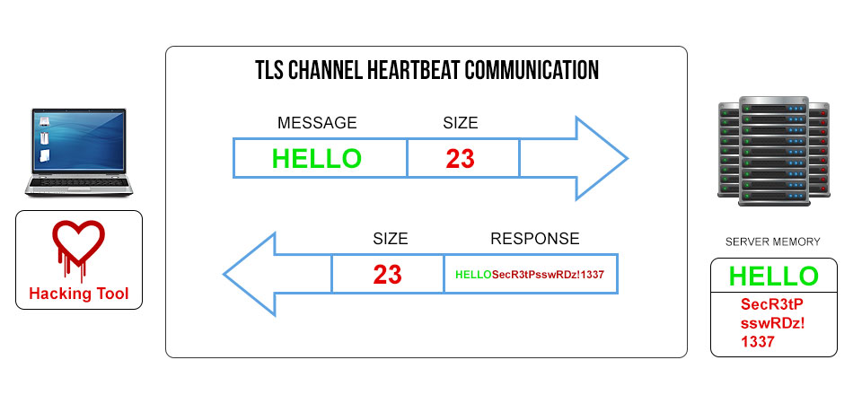 Diagram of Corrupt TLS Heartbeat Communication - Ultimate Guide to Heartbleed for Non-Techies