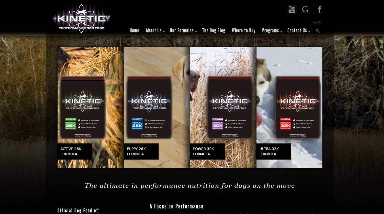Quad City Web Design Kinetic Dog Food