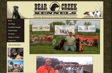 Quad City Web Design Bear Creek